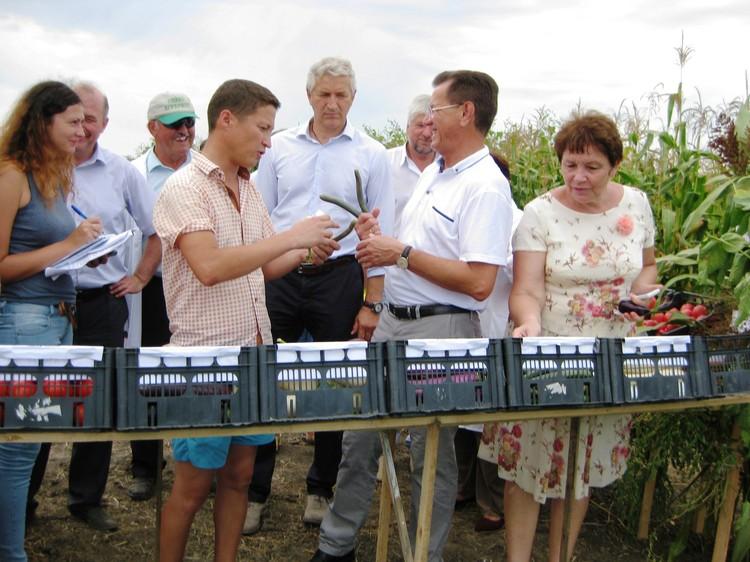 Разнообразие гибридных культур удивило даже губернатора Астраханской области Александра Жилкина. Фото ВНИИОБ.