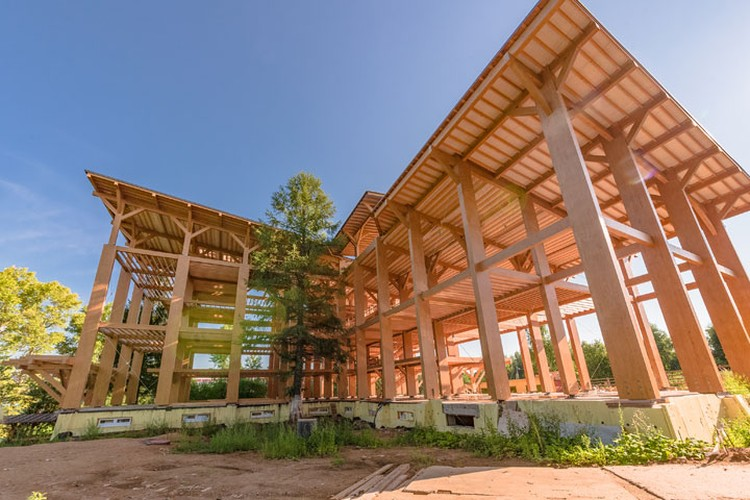 Задача государства - увеличить объем дерева в строительстве.