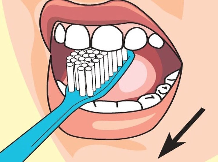 Правильная чистка зубов: шаг второй. Схема: Дмитрий Полухин