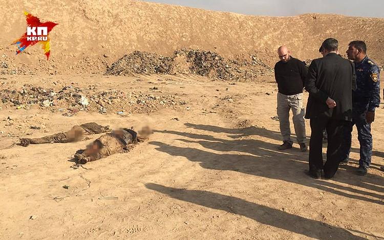 Хаммам Аль-Али стоит на важной транспортной артерии, по которой иракская армия медленно продвигается к Мосулу с юга