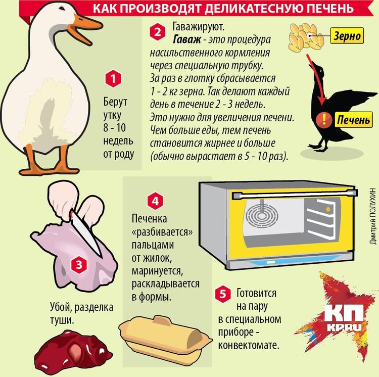 Как производят деликатесную печень