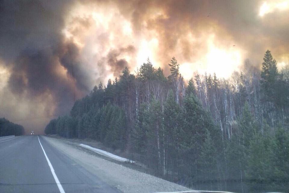 Ненужная стабильность: почему в Иркутске ежегодно горят леса?