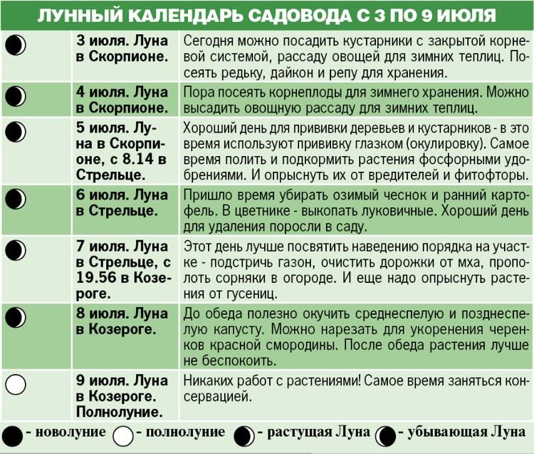 Лунный календарь садовода с 3 по 9 июля