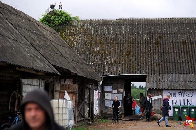 «Лагерь для пущи» - неформальное объединение тех, кто намерен противостоять вырубке леса.