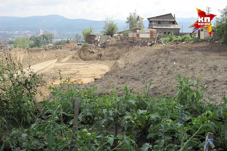 Анжела Сушко: «У нас еще суд идет, а огород мой уже снесли полностью - одна грядка с помидорами осталась...»