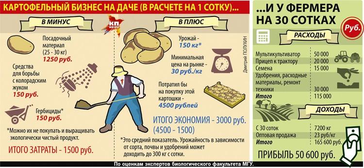 Картофельный бизнес на даче и у фермера на 30 сотках