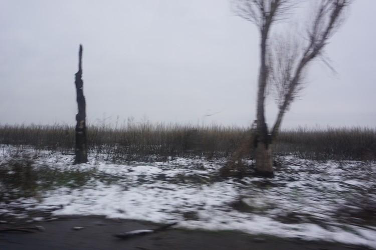Деревья по краям дороги стоят обугленные, а сама дорога - в воронках.