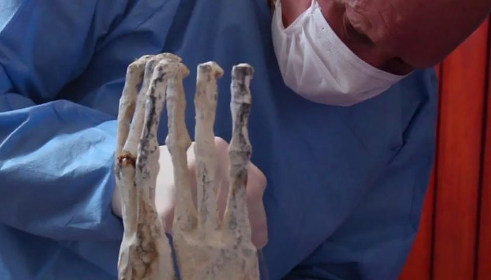 Коротков берет образцы ткани с пальцев Марии.