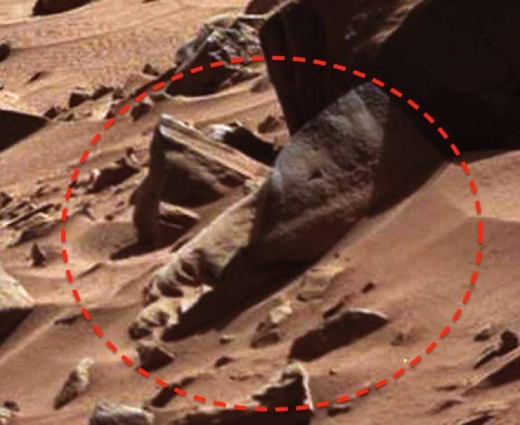 Половинка бюста марсианина, обнаруженная на снимке с соседней планеты.