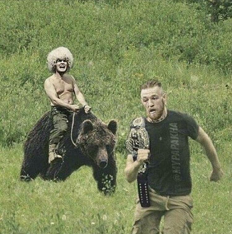 Не зря на фанатской картинке Хабиб Нурмагомедов гонится за МакГрегором именно на медведе. Фото: twitter.com/TeamKhabib