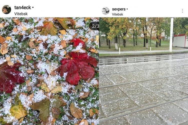 Град засыпал осеннюю листву и улицы Витебска. Фото: соцсети.