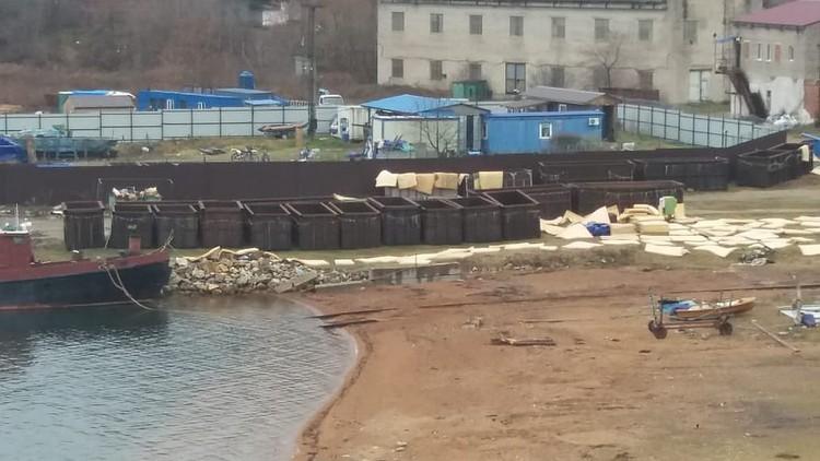 На базе находятся отдельные водохранилища для морских млекопитающих. Фото: Нина Зырянова
