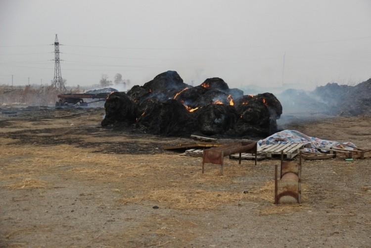 Огонь уничтожил сено на ферме и часть пастбища