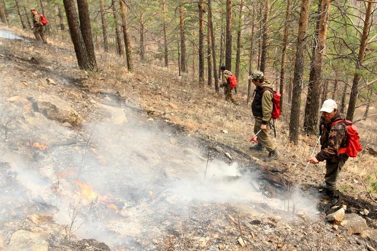 Тушить пожар мешает сильный ветер, который заново раздувает очаги в горах.
