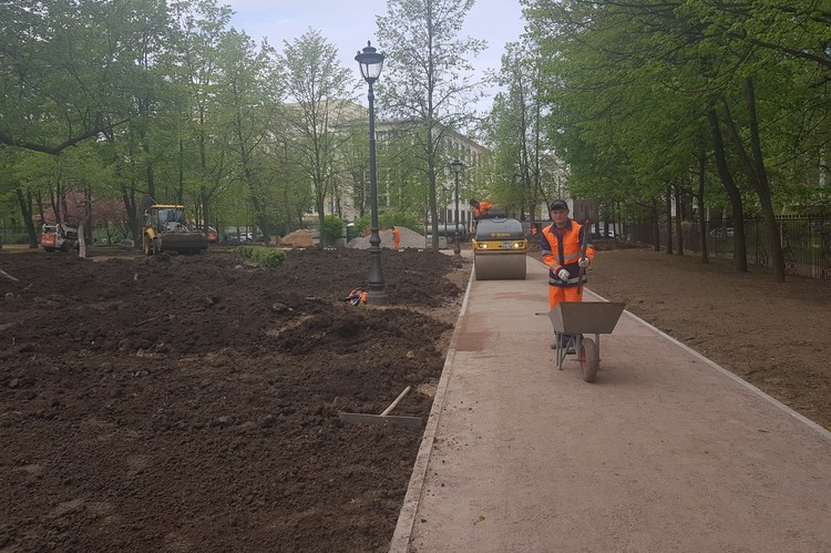 В Выборгском саду высадят около 60 новых деревьев. Фото: Пресс-служба Комитета по благоустройству.