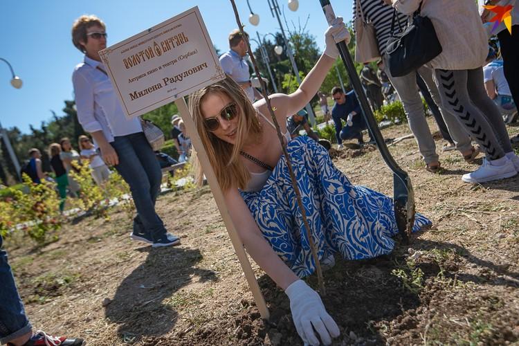 Для актрисы, сыгравшей в фильме «Балканский рубеж» Милены Радулович посадка дерева происходила в первый раз в жизни