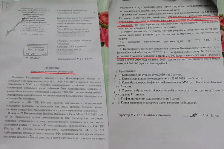 Заявление о рассрочке, которое написали в суд коммунальщики. Фото: предоставлено Людмилой Кузьминой.