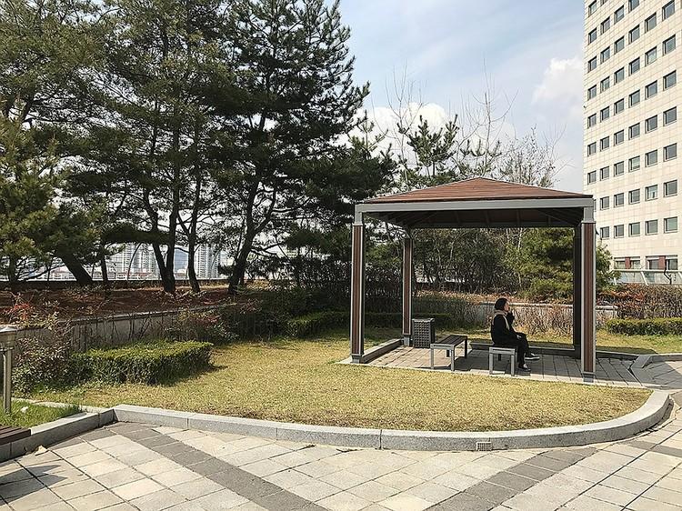 В парке около клиники можно отдохнуть среди цветущей сакуры