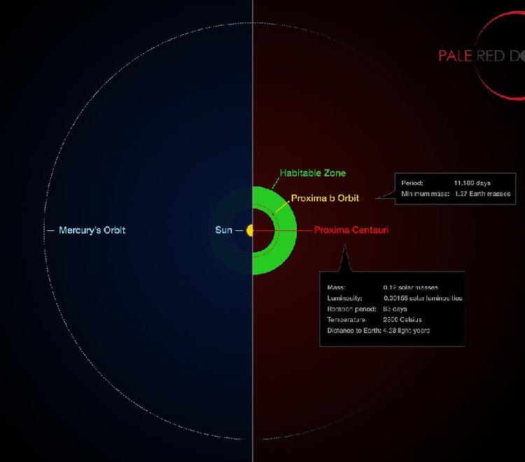 Proxima b находится близко к своему красному карлику. От этого и попадает в обитаемую зону.