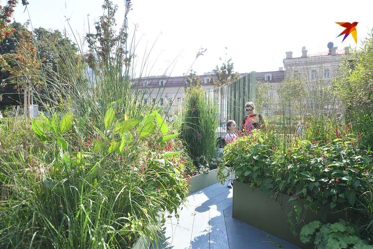 Сад на Сухаревской
