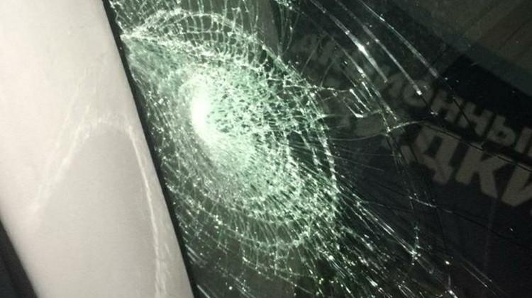 Лобовое стекло в авто пробила ветка. Фото: dpskontrol_125rus