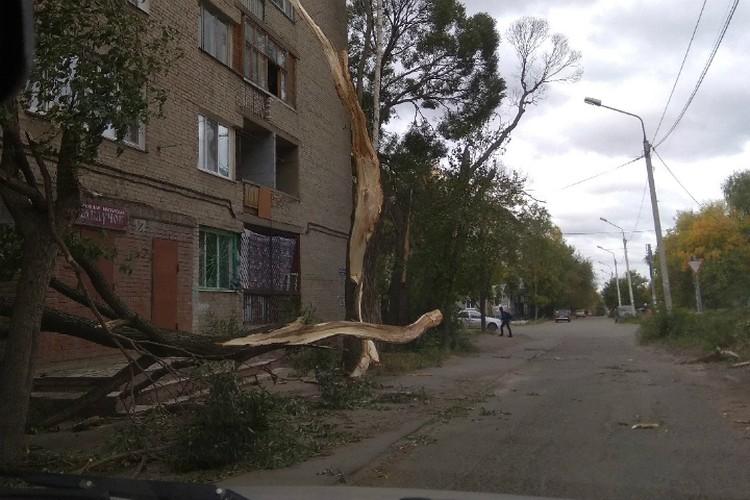 Фото: «Инцидент Омск», vk.com