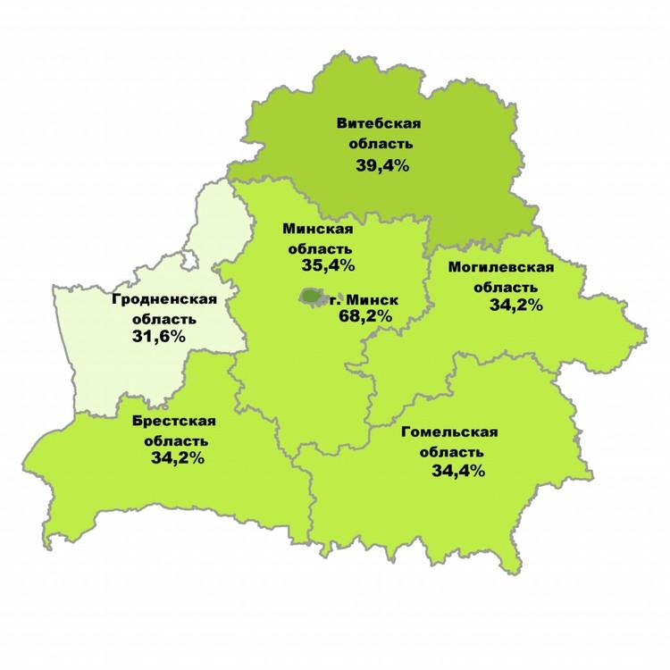 Доля переписавшихся через Интернет от общего числа, принявших участие в переписи, на 9.00 19 октября 2019 г. Фото: Белстат