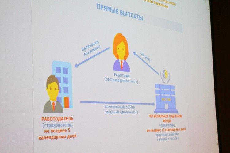 Проект «Прямые выплаты» реализуется в части субъектов Российской федерации еще с 2011 года. Фото Ивана Горбунова