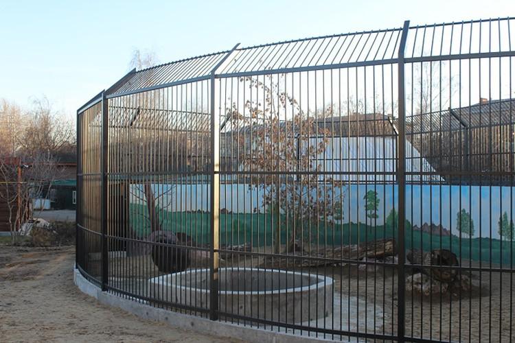 """В зоопарке """"Лимпопо"""" для Даши был подготовлен просторный вольер."""