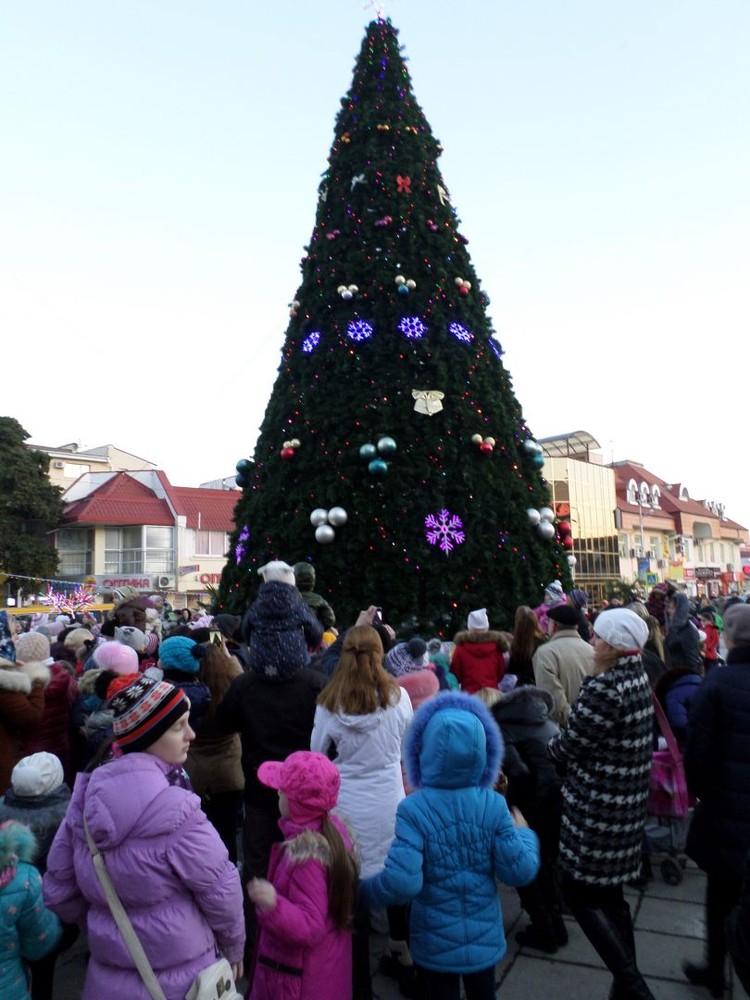 Открытие городской елки состоится 19 декабря. Фото: пресс-служба администрации Алушты