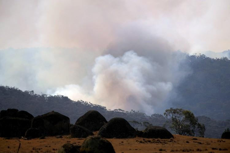 В Австралии много открытых территорий - по ним огонь перемещается быстрее всего и поражает леса с огромной скоростью