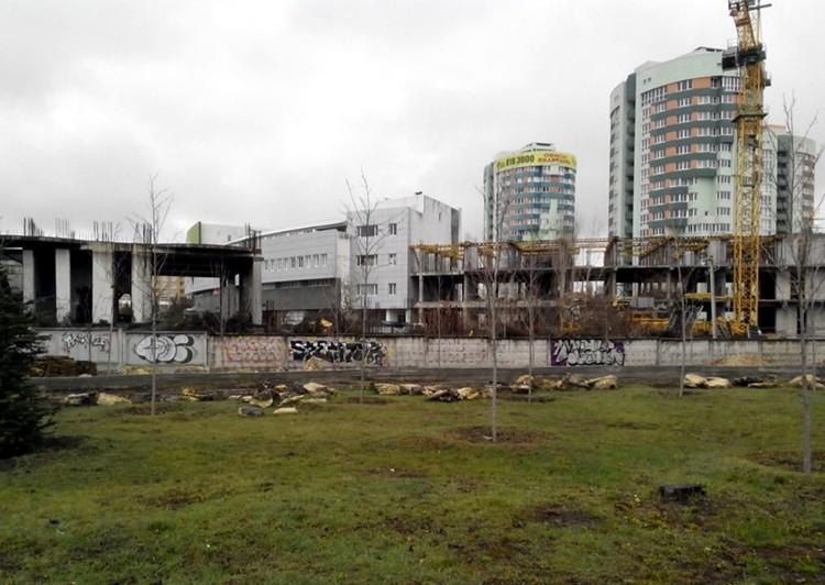 Новая стройка начнется между зданием «Консоли» и парком. Фото Марии Поддубной