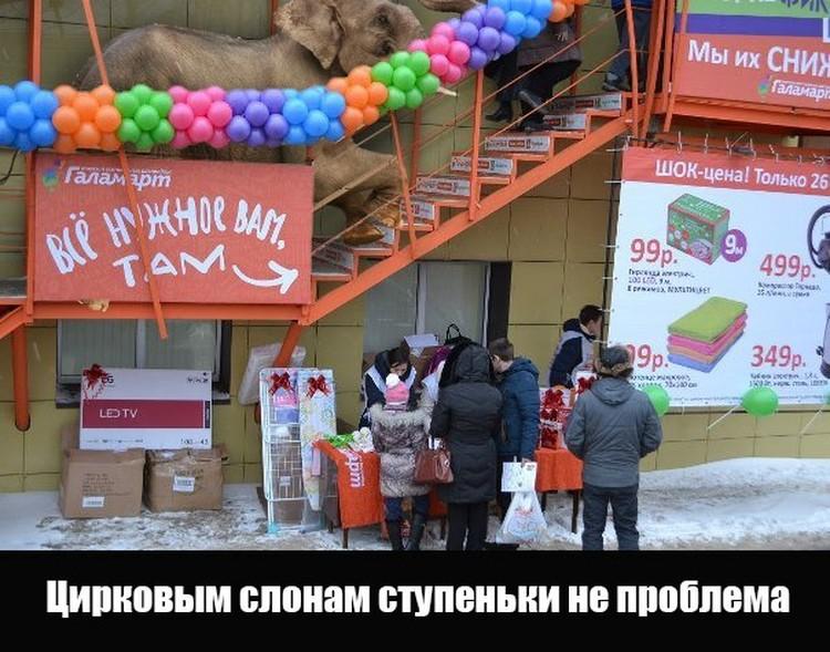 """Фото: предоставлено магазином """"Галамарт"""""""