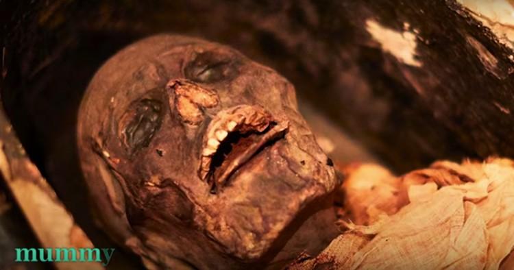 Жрец хорошо сохранился. Для мумии, конечно.