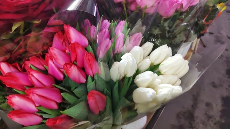 Тюльпаны можно купить от 80 рублей