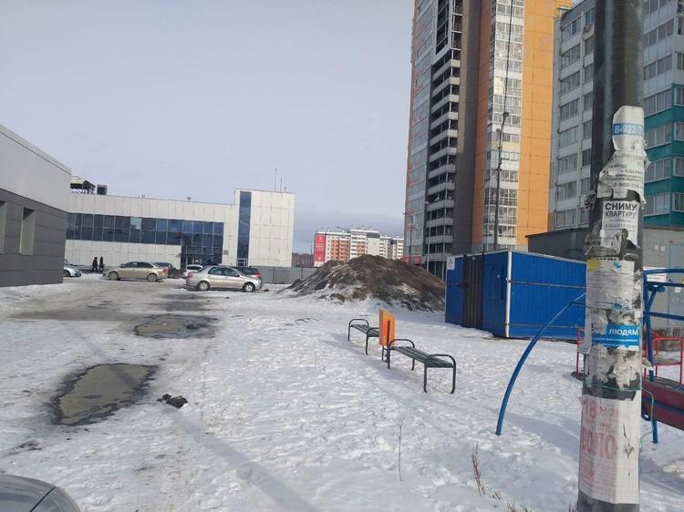Загаженные рекламой стаолбы и куча грязного снега на заднем плане.