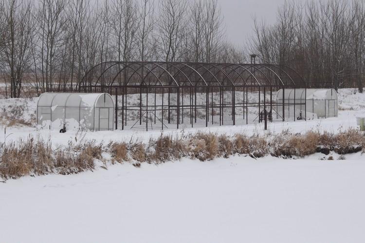 Рядом с просторными летними вольерами расположены хозяйственные постройки для хранения продовольствия.