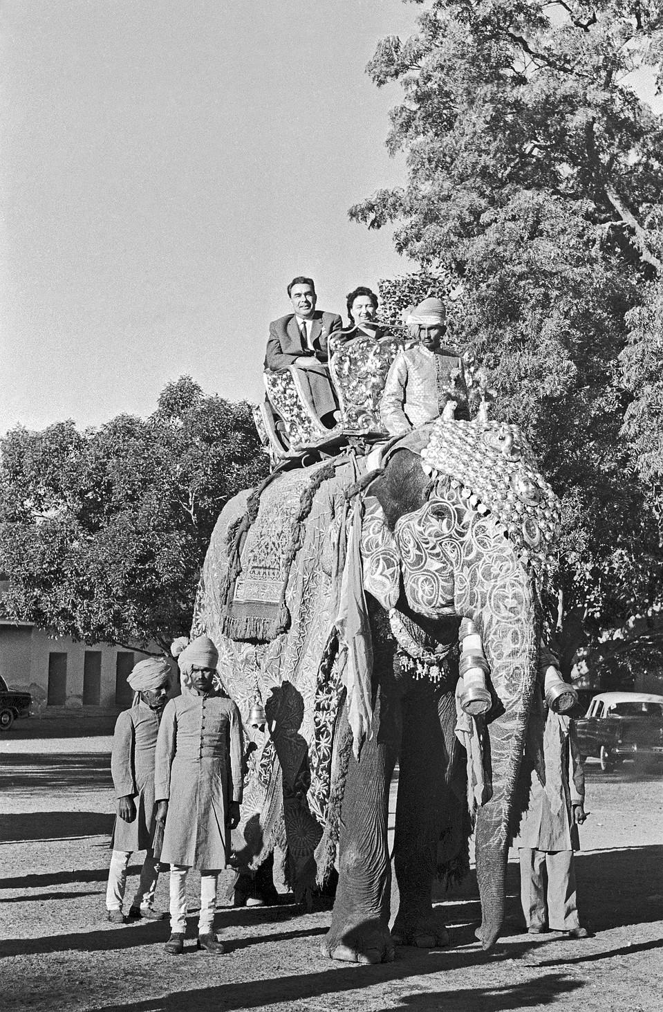 Виктория Брежнева чувствовала себя за своим мужем - Леонидом Брежневым, как за слоном, поэтому, выйдя за него, бросила работу и занималась лишь детьми. (На фото - 1961 год, Индия.) Фото: ТАСС