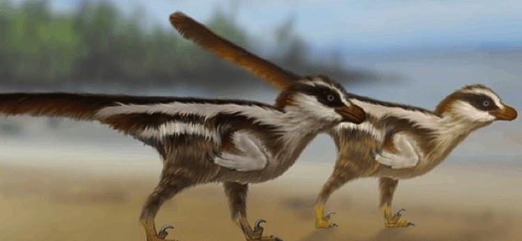 Прежние рекордсмены - динозавры размером с воробья.