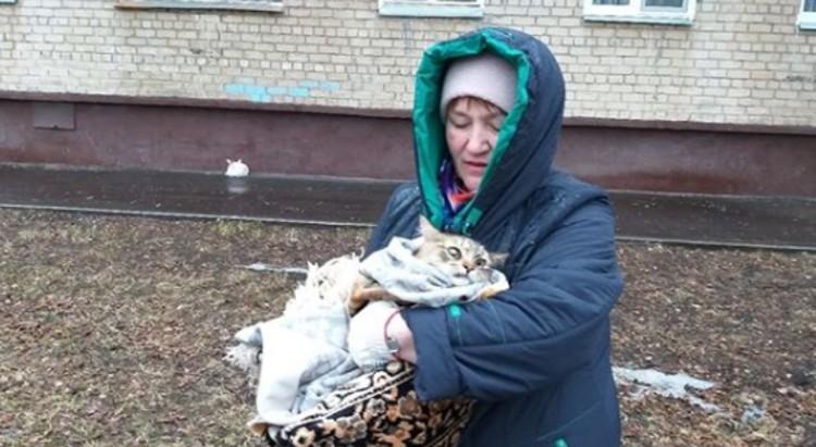 Кошку передали местной жительнице