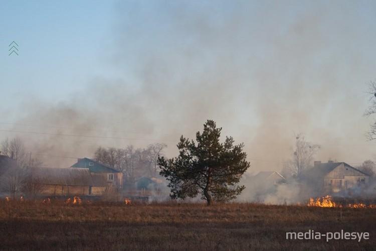 Чтобы ликвидировать возгорания в экосистемах пожарным не всегда хватает одного дня. Фото: media-polesye.by.