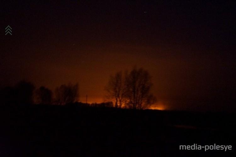 Пожароопасный период в Беларуси уже начался. Фото: media-polesye.by.