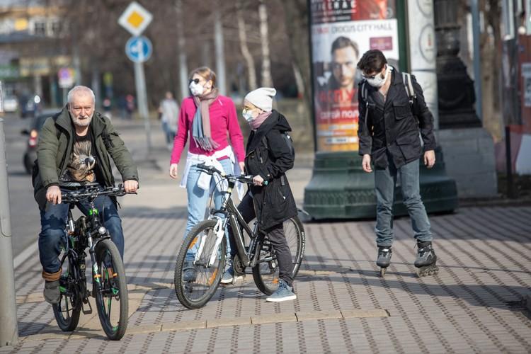Отправляются на велопрогулки.