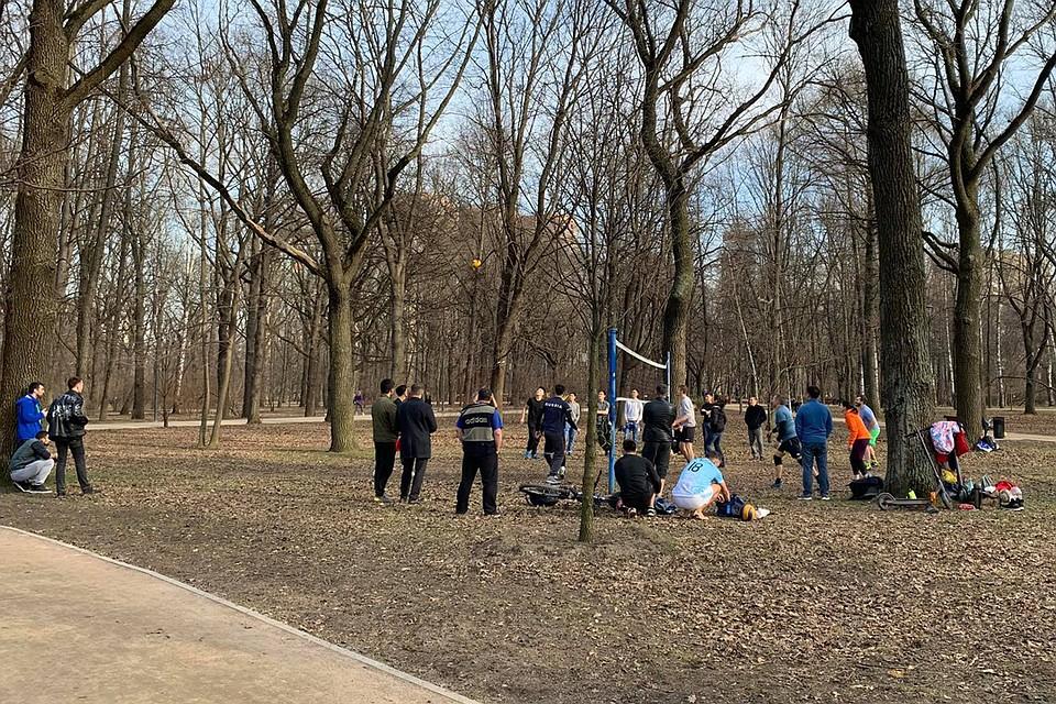 В парке Дубки народ играет в волейбол. Фото: Елена ПОПОВА