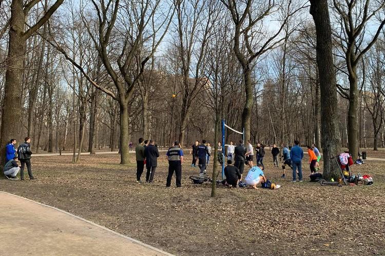 В парке Дубки народ играет в волейбол.