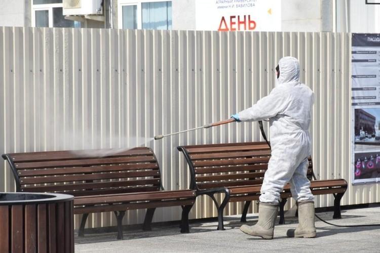 Улицы в Саратове обрабатывают антисептиками