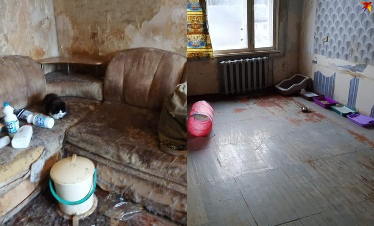 Вот так квартира выглядела до уборки (слева) и после (справа. Фото: Надежда Пасечная