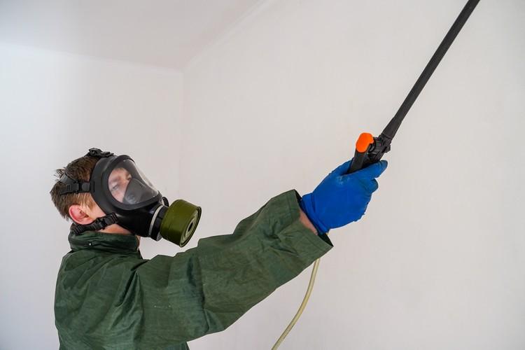Обработка стен - важная функция в работе специалиста