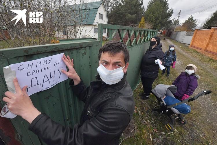 """В России считается одним из лучших вариантов """"пересидеть"""" эпидемию на даче."""