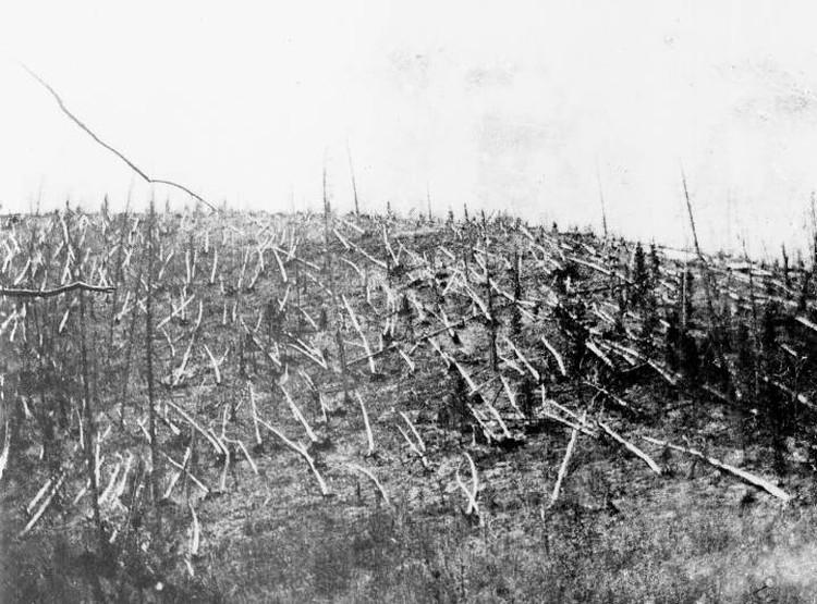 Лес, как полагают ученые, повалила взрывная волна, пришедшая сверху - с высоты 10-15 километров.